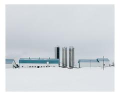 saint-joseph-des-érables (Mériol Lehmann) Tags: landscape winter beauce canada barn farmstead hangar farm rural quebec silos snow saintjosephdebeauce québec ca