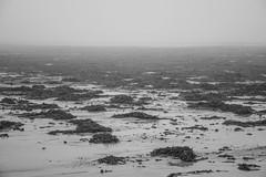 Warec (Mylene Gauthier) Tags: 2018 atlantique brouillard brume ciel contédeyork eau gris maine mars mylenegauthier nikond7100 noiretblanc océan oldorchardbeach paysagedegrisaille plage plandeau printemps sable étatsunis