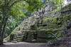 Parque Tikal (Imthearsonist) Tags: tikal park guatemala flores petén sitioarqueologico mayaruins mayaculture mayaarquitecture mayasettlement parquetikal piramids green forest bosque selva jungle stonework rock trees ruins ancient
