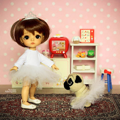 True friendship. (Passion for Blythe) Tags: latiyellow fiends friendship pug dog ballet tiny cute lati bjd haru