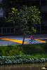 Cyclist (Otacílio Rodrigues) Tags: árvore rio river bicicleta bike ciclista cyclist faixadepedestre crosswalk grama grass vegetação vegetation água water rua street grades grids urban streetphoto cidade city resende brasil oro reflexos reflections supershot