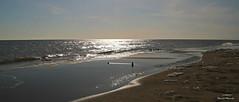 L'éveil / Awakening (deplour) Tags: plage beach dune bouctouche détroit northumberland straight sable sand