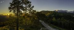 Sierra de los Ríos (cimanorte) Tags: fotografia pirineo cima norte pirineos foto sierra rios valle val hecho echo naturaleza nature tree landscape landscapephotography