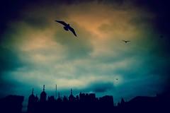 I Cieli di Londra... (mirella cotella) Tags: places travel tones landscapes london atmosphere mood colors sky