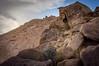Volcanic Tableland (dwblakey) Tags: california hike landscape desert easternsierra bishop outside outdoors hiking inyocounty volcanictableland volcanictablelands rocks unitedstates us