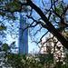 Swablu in Port of Keelung, Keelung 25
