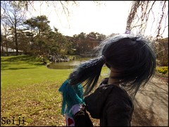 Back to back (Seiji-Univers) Tags: seiji seijiunivers bjd doll balljointeddoll msdboy msd yosd murvenart jolanoliver jeanluc strong muscular kawaii withdoll winter hiver parc park floral paris france french sunlight together couple love yaoi gay boi boy male man blue outside nature back pose