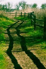 Crooked Shadows (Mule67) Tags: shadow fence crooked trail jackson bottom wet land oregon