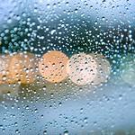 cold rainy afternoon thumbnail