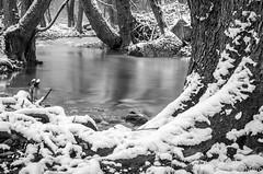 L'hiver n'en finit plus (Nu Mero) Tags: riviere neige poselongue giessen nd64 nb nature etang fleuve lac villé grandest france fr