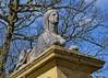 Sphinx (amhjp) Tags: templenewsam sphnx egypt egyptian leeds leedscity statues statelyhome yorkshire westyorkshire england english british britain sky blue heritage heritagesite historical historic history