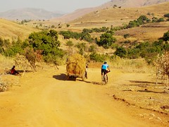 Southern #Madagascar with another landscape, on the way we meet the villagers and their means of transport (so-called #Sarety in #Malagasy) #CycleMadagascar #MTB #mountainbike #stevens #rock_machine #cube #Madagascar #challenge #BikeHoliday #BikeExperienc (klaus.a.sperling) Tags: bikeexperience malagasy mtb culinary bicyclelicious mountainbike sarety bikeholiday suntour challenge cyclemadagascar stevens rockshox culinaire cube rockmachine madagascar