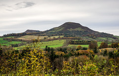 Summit (vxisme.) Tags: borders kelso rivertweed eildonhills autumn olympusem1 sky pastelcolours greens shurbs farmland