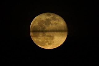 DSC09644 (2) Half Moons Togather