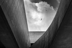 Origine II (Roberto -) Tags: architecture architettura maxxi roma zaha hadid rome black white bn bnw bianco nero minimal minimalistic tokina 1120