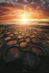 La Jolla, CA (wesome) Tags: adamattoun lajolla sandiego sunset