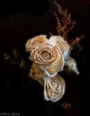 Desde arriba! (Marcelo Rodriguez-Puebla) Tags: 2018 home raleigh pinhole softfocus rodriguezpuebla rodz rodriz marcello flowers flores flower still stilllife color fujifilm fuji xt2 xf27 xf27mm holga