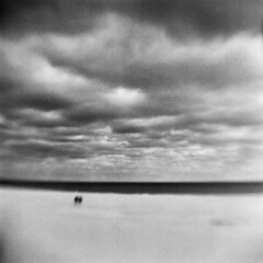 Ocean Desert #6 (LowerDarnley) Tags: browniehawkeyeflash kodak verichrome expiredfilm 620film ipswich ma cranebeach ocean beach figures flippedlens clouds sky ominous offseason