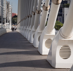 Puente de l'Assut de l'Or (2) (Teelicht) Tags: architektur brücke cityofartsandsciences ciudaddelasartesylasciencias ciutatdelesartsilesciències comunidadvalenciana pontdelassutdelor pontdelaserradora puentedelassutdelor santiagocalatrava spain spanien stadtderkünsteundderwissenschaften valencia architecture bridge