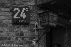 20180328-IMG_1878 (deltic21) Tags: oświęcim małopolskie poland auschwitz birkenau world war 2 wwii jew jews jewish nazi germany pole poles track tracks rail building buildings camp concentration death extermination german polish 1939 1945 holocaust murder prison horror massacre remember rememberance never forget barbed wire mass train trains