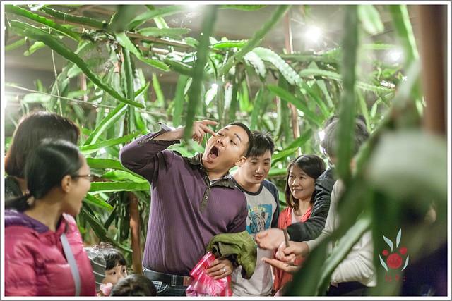 火龍果園星光野餐之找地瓜 烤地瓜 吃地瓜 (35)