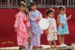 Little Beauties (melvhsc100) Tags: children japanese events group photography kimono cute fun picnic celebration