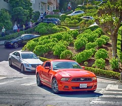 Lombard St. (cb|dg photo) Tags: lombardst switchbacks crookedstreet touristattraction tourist california sanfrancisco lombardstreet automobile auto car ford mustang