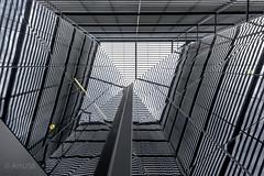 Hyperspace (ARTUS8) Tags: pattern fassade flickr nikon28300mmf3556 fenster muster spiegelung linien modernearchitektur nikond800 lookingup
