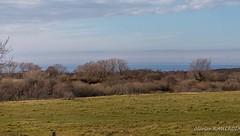 20180311_153901_0015 (Olivier_1954) Tags: vacances france balade wissant ciel nuage paysage séjour visite hautsdefrance fr