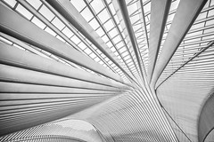 linear heaven (Blende1.8) Tags: liègeguillemins liège lüttich bahnhof station abstract abstrakt roof construction lines line linien dachkonstruktion light hell wideangle belgien belgium santiagocalatrava calatrava architektur modernarchitecture architecture modern contemporary sony alpha ilce7m2 emount voigtländer voigtlaender black white monochrome mono schwarzweiss ultrawideheliar 12mm