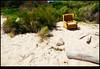 180121-5784-XM1.JPG (hopeless128) Tags: 2018 beach sydney armchair australia maroubra newsouthwales au