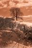 K7-190318-45 (Steve Chasey Photography) Tags: bath infrared k7 nimlethill pentaxk7 smcpentaxda1650mm snow cotswoldsaonb