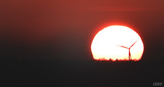Sonnenuntergang Windrad in der Sonne (LXXXVI) Tags: sonnenuntergang kiel förde frühling kielerförde aprilorange rot sunset wolken möwe möwen dächer windrad windrädernahaufnahme sky himmel norden schleswigholstein ostsee baltic meer küste