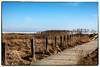 HFF Fenced Friday - Zaun am Vogelschutzgebiet (J.Weyerhäuser) Tags: watt braderup sylt kampen leuchtturm eis unlimitedphotos