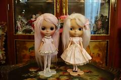In a pink mood... (Primrose Princess) Tags: takara blythe doll custom pinkalpacareroot morganorton helloblythe ooakblythe customblythe pink princess atomicblythe dolly couture dollyheaven