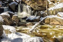 Trap Falls in Winter (t s george) Tags: waterfall brook stream flow winter cold landscape outdoors water rocks canon6dmarkii ashbyma trapfalls willardbrook