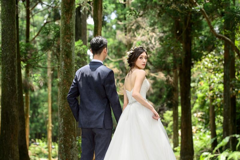 cheri婚紗包套,天使熱愛的生活,自助婚紗,婚紗咖啡廳,黑森林婚紗,新祕BONA,MSC_0021