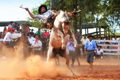 Vagner Cardoso e Payador (Eduardo Amorim) Tags: gaúcho gaúchos gaucho gauchos cavalos caballos horses chevaux cavalli pferde caballo horse cheval cavallo pferd pampa campanha fronteira quaraí riograndedosul brésil brasil sudamérica südamerika suramérica américadosul southamerica amériquedusud americameridionale américadelsur americadelsud cavalo 馬 حصان 马 лошадь ঘোড়া 말 סוס ม้า häst hest hevonen άλογο brazil eduardoamorim gineteada jineteada