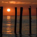 Staten Island Sunrise thumbnail