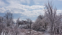 Avril en pays tempéré du Nord (2) (Luc Marc) Tags: arbre glace neige paysage printemps verglas saintlin stlin québec temps