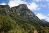 Вид на Столовую гору (Oleg Nomad) Tags: африка юар кейптаун кирстенбош ботаническийсад растения цветы протея africa capetown kirstenbosh botanicalgarden vegetation flowers protea travel