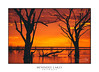 Silhouettes at Menindee (sugarbellaleah) Tags: sunset menindeelake menindee lake water silhouette tree vivid relaxation outback australia desert oasis orange red black ripples sundown nature environment ecosystem drought waterrights politics