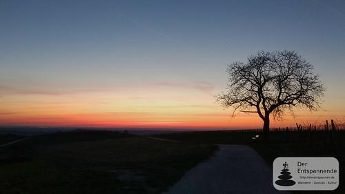 Morgenrot über der Hiwweltour Zornheimer Berg