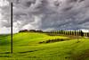 Apocalyptic sky (SLpixeLS) Tags: italy italie tuscany toscane toscana landscape paysage tree arbre cypress cyprès sky ciel cloud nuage dramatic dramatique agriturismosantaluciacapanne