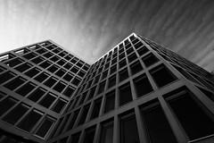 La oficina (jantoniojess) Tags: sevilla seville andalucía españa spain ventana monocromático blancoynegro blackandwhite arquitectura líneas simetría perspectiva perspective oficina edificio architecture geometría edificiopicassosevilla