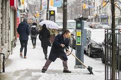 Toronto ice storm 2018 - shovelling on Dundas (jer1961) Tags: toronto snow ice snowstorm icestorm torontoicestorm torontoicestorm2018 brockton sleet dundasstreet shovel shovelling