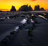 Tethered (Hilton Chen) Tags: rockformations trees olympicnationalpark leadinglines washington sunset pointofthearches landscape reflection seastacks shishibeach seascape spring tidepool silhouette sand clallambay unitedstates us