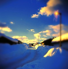 Mondays are like this you know (evakongshavn) Tags: goodmorning goodmorningworld new light yellow blue village myview winter winterwonderland winterlandscape snow white house building goldenscape golden 7dwf