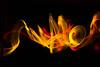 IMG_2094a (matek 21) Tags: lightpainting lp light lights lightblade lightblading liteblade liteblading longexposure varta vartabatteries vartaflashlight lihghtart lightjunkies licht mateuszkrol mateuszkról malowanieświatłem digital digitalgraffiti digitalgraphic plexi plexiart plexiglass