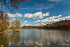 Spring Reflection (NHFotography) Tags: spring reflection hungary